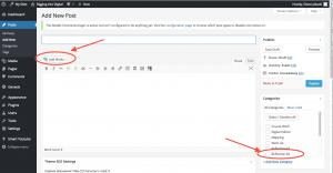 Post editing interface
